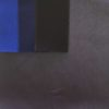coton tres lourd - tissu macasports